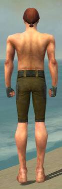 Mesmer Ascalon Armor M gray arms legs back