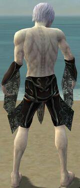 Necromancer Vabbian Armor M gray arms legs back