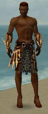 Ranger Elite Sunspear Armor M gray arms legs front