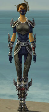 Assassin Norn Armor F gray front