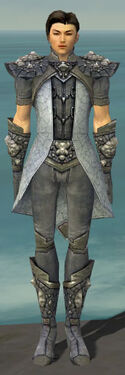 Elementalist Stoneforged Armor M gray front
