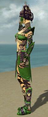 Ritualist Obsidian Armor F dyed side