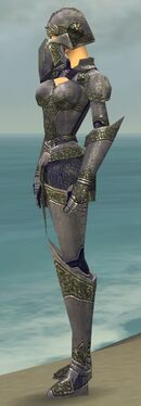 Warrior Platemail Armor F gray side