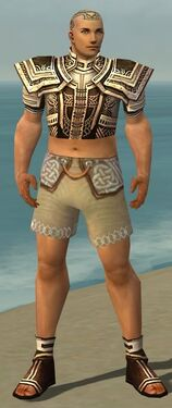 Monk Monument Armor M gray chest feet front