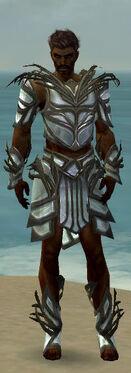 Paragon Primeval Armor M gray front