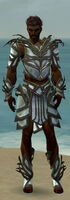 Paragon Primeval Armor M gray front