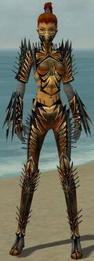 Assassin Elite Exotic Armor F gray front