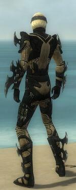 Assassin Kurzick Armor M dyed back