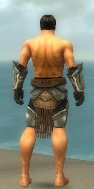 Warrior Sunspear Armor M gray arms legs back