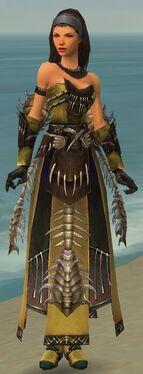 Dervish Primeval Armor F nohelmet