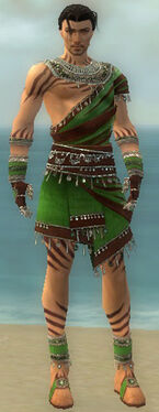 Ritualist Exotic Armor M dyed front