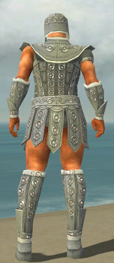 Warrior Ascalon Armor M gray back