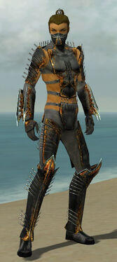 Assassin Exotic Armor M gray front