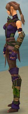 Ranger Druid Armor F dyed side