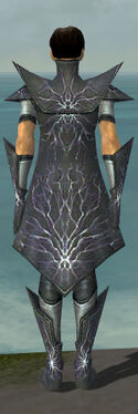 Elementalist Stormforged Armor M gray back