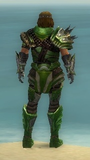 Warrior Deldrimor Armor M dyed back
