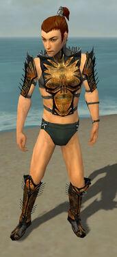 Assassin Elite Exotic Armor M gray chest feet front