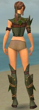 Ranger Druid Armor F gray chest feet back