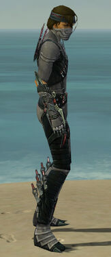 Assassin Elite Canthan Armor M gray side