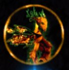 Avatar of Melandru symbol