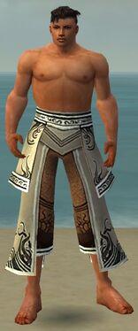 Aureate Pants M gray front