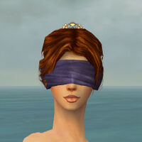 Blindfold F gray front