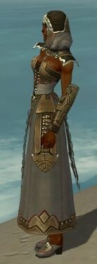 Dervish Asuran Armor F gray side