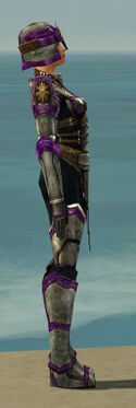 Warrior Sunspear Armor F dyed side