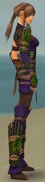Ranger Druid Armor F dyed side alternate