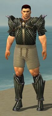 Warrior Wyvern Armor M gray chest feet front