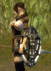 Female Monk Ancient Shield Bug
