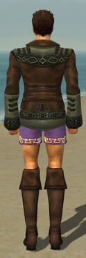 Mesmer Istani Armor M gray chest feet back
