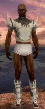 Paragon Vabbian Armor M gray chest feet front