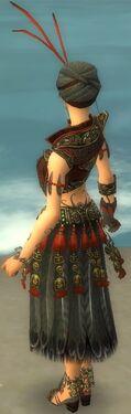 Ritualist Asuran Armor F gray back