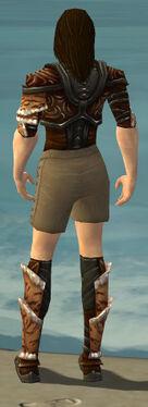 Ranger Vabbian Armor M gray chest feet back