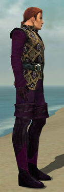 Mesmer Courtly Armor M dyed side