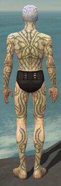 Necromancer Scar Pattern Armor M gray back