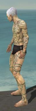 Necromancer Scar Pattern Armor M gray side