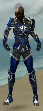 Necromancer Tyrian Armor M dyed front