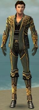 Mesmer Asuran Armor M gray front