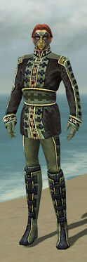 Mesmer Canthan Armor M gray front