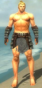 Warrior Krytan Armor M gray arms legs front