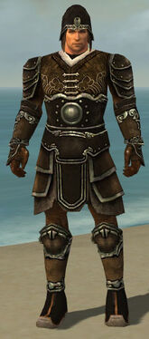 Warrior Shing Jea Armor M gray front