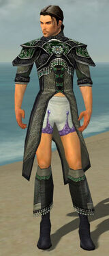 Elementalist Elite Luxon Armor M gray chest feet front