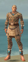 Monk Labyrinthine Armor M gray front