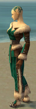 Monk Norn Armor F dyed side