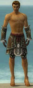 Ranger Elite Canthan Armor M gray arms legs front