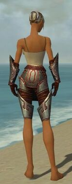 Warrior Asuran Armor F gray arms legs back