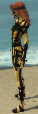 Assassin Obsidian Armor F dyed side
