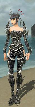 Necromancer Elite Profane Armor F gray front